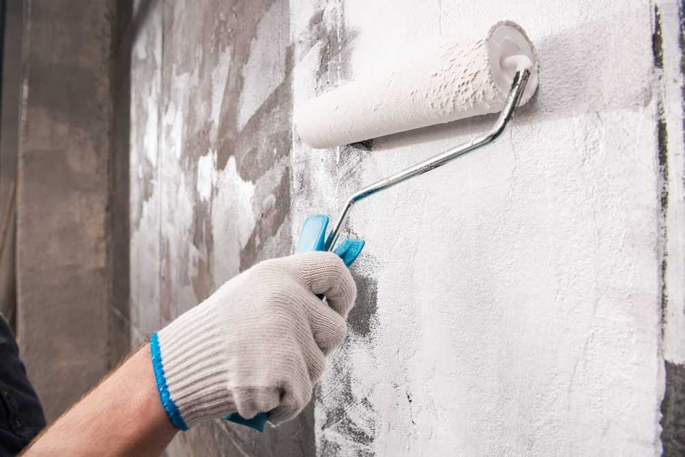 How To Paint Over Mold And Mildew