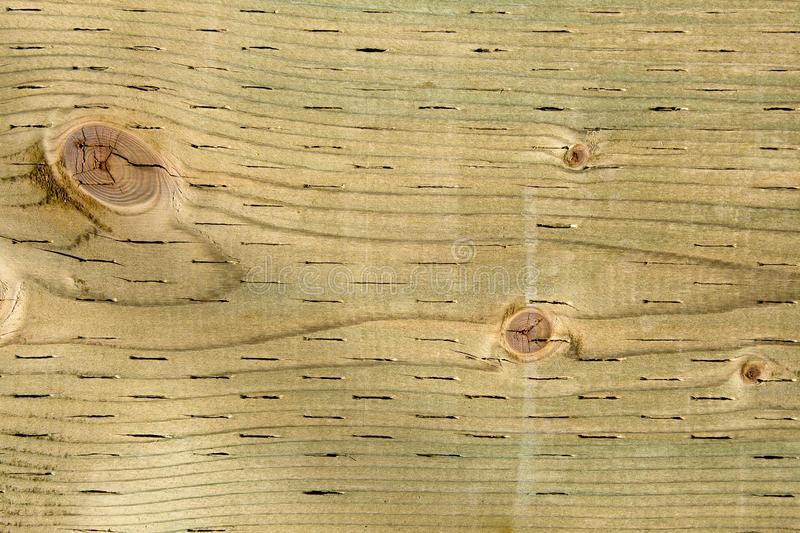 Pressure Treated Wood Meaning
